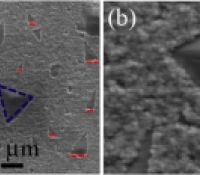 Triangular graphene grains on Cu substrates
